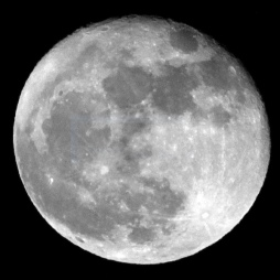Moon image taken in January