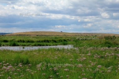 HDR test one - Rainham Marshes
