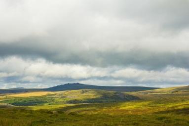 Dartmoor Landscape 1