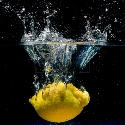 Suspended Lemon