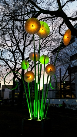 Part of the Lumiere festival