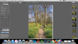 Initial HDR Process