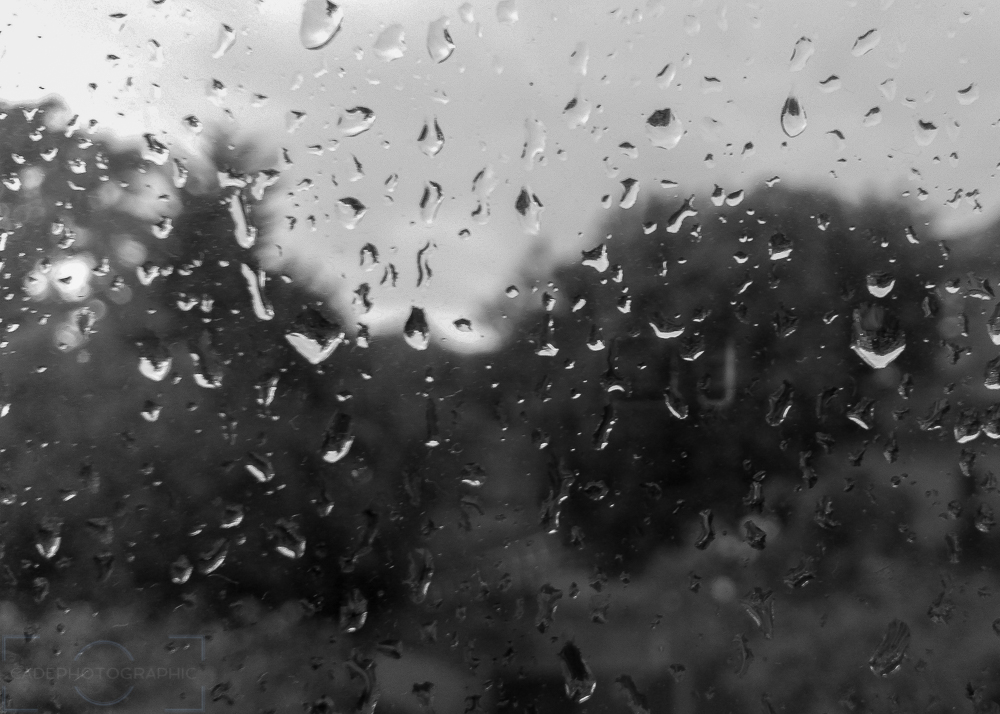 Black and White Wednesdays: Rain | CADEPhotographic